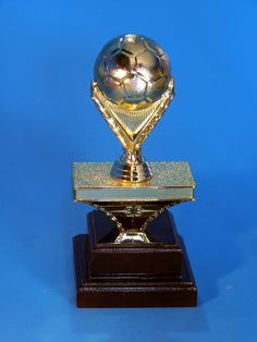 Exclusive to Trophy Junction! We made this up as something new for our clients. What do you think? Soccer Ball, Thinking Of You, Platform, Thinking About You, Wedge, Soccer, Football, Futbol