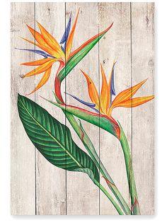 Illustration Botanique, Botanical Illustration, Art Floral, Watercolor Flowers, Watercolor Paintings, Birds Of Paradise Flower, Acrilic Paintings, Indian Art Paintings, Wood Flowers