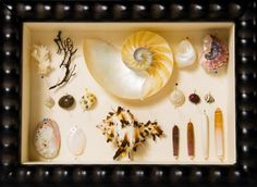 Shadow Box Gift Ideas - Bing Images