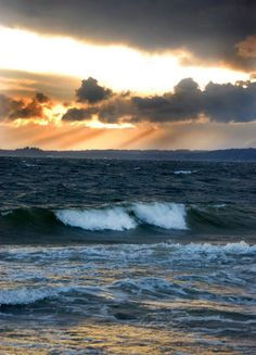 A windy day at Lowman Beach in West Seattle. Photo by Patrick Robinson. Copyright©2012 Robinson Newspapers