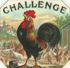 Vintage rooster graphic. I love this. And I know my dad would, too.