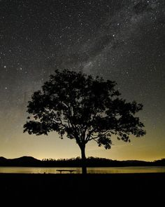 Shared by tommcquarrie #astrophotography #contratahotel (o) http://ift.tt/23rNgls place to sit and watch the stars... #brisbane #brisbaneanyday #visitbrisbane #queensland #thisisqueensland #landscape #Australia #seeaustralia #nikon #nikonaustralia #mynikonlife #nikonphotography #nikontop #samsung #galaxys6 #photooftheday #tokina #tokina1116 #astro