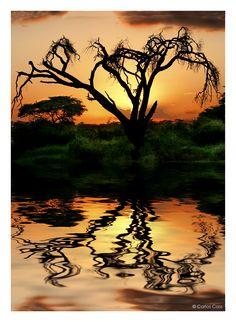 Sunset - Tanzania