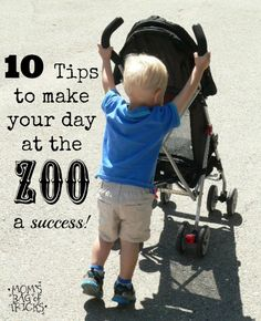 10 easy tips to make your day at the zoo a success!