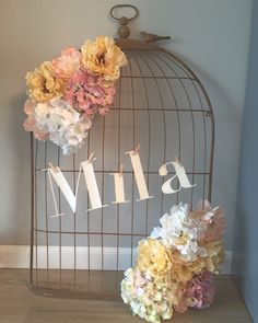 Baby girl hospital door hanger birdcage