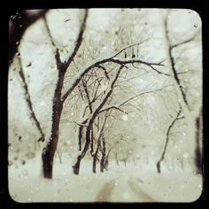 "Winter *❄️~*.Wishes & Dreams.*~❄️* ""Somewhere Along the Way"" by EyePoetryPhotography"