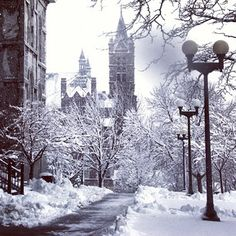 Beautiful winter day on the Syracuse University campus in Syracuse, New York. I was so lucky to go to a school that has beauty like this.