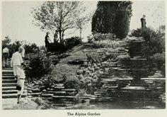All of the World's Fairs, starting with the Crystal Palace in London in 1851, presented the latest trends in horticulture. The 1933 Century of Progress fair in Chicago featured an alpine garden with small alpine plants.