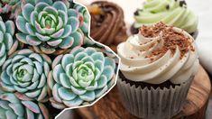 Der schönste Food-Trend: Succulent Cupcakes Succulent Cupcakes, Food Trends, Desserts, Beautiful Things, Food Food, Nice Asses, Tailgate Desserts, Deserts, Postres