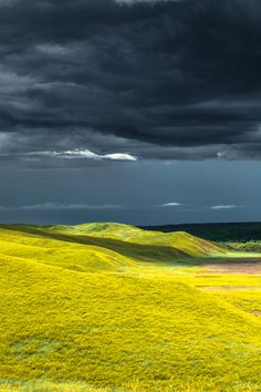 """Just for those rolling chartreuse hills. Credited as, """"Cheyenne River Valley/ Bonny Fleming. Landscape Photos, Landscape Photography, Nature Photography, Beautiful World, Beautiful Places, Beautiful Pictures, Afrique Art, Nature Aesthetic, Jolie Photo"""