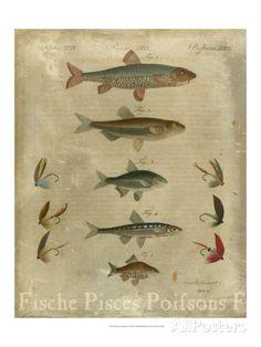 Pisces Composition I Art at AllPosters.com