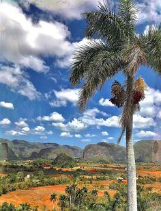 #Vinales #Viñales #Cuba #BestInTravel #LonelyPlanet #CubaTravel #Havana #Holidays #UNESCO Visit #CasaParticular Renga y Julia B&B The only one www.CasaVinales.jimdo.com