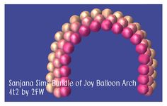 Sanjana Sims Bundle of Joy Balloon Arch 4t2 Converted - Two Fingers Whiskey