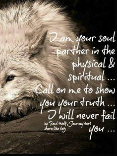 Wolf's Journey In Mind American Spirit, Native American, Wolf Love, Animal Totems, Spirit Guides, Spirit Animal, Pisces, Spirituality, Wolves