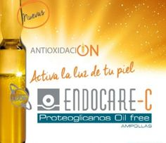 Lanzamiento: Nuevas Ampollas Endocare C Proteoglicanos Oil Free
