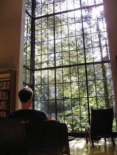 Mill Valley Library -- The views, the windows, the natural light *gasp in awe*