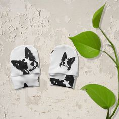 Border Collie Organic Newborn Scratch Mittens, Dog Owner Newborn Gifts, Infant Mittens, Cotton Scratch Mittens, New Dad Gift, New Mum Gift by MONOFACESoCHILDREN on Etsy Baby Mittens, Gifts For New Dads, Baby Leggings, New Mums, Newborn Gifts, Organic Baby, Border Collie, Baby Wearing, Baby Hats