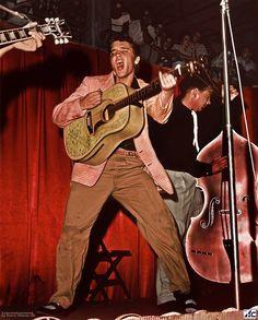 Star Elvis Presley