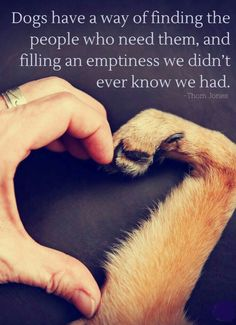 Dogs have a way of finding the people who need them, and filling an emptiness we didn't ever know we had. Source by riekehamburg dog dog memes dog videos videos wallpaper dog memes dog quotes dogs dogs pictures dogs videos puppies puppy video I Love Dogs, Puppy Love, Cute Puppies, Cute Dogs, Animal Quotes, Puppy Quotes, Dog Quotes Love, Quotes For Dogs, Dog Quotes Funny