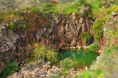 A green pool amid rocky cliffs in northern Israel offers cool relief for hikers.