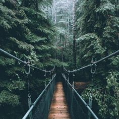 I miss Vancouver so much 😍 one of my fav places ever. Phot… Ich vermisse Vancouver so sehr – einer meiner. Nature Aesthetic, Travel Aesthetic, Nature Pictures, Cool Pictures, Nature Images, Beautiful World, Beautiful Places, Vancouver, Polaroid Foto