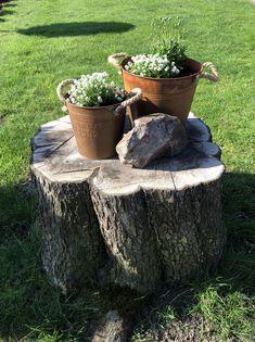 Elegant Baum Baumstumpf Dekorieren Tree Stump