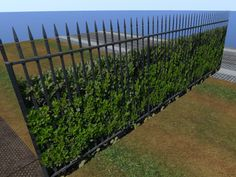 Beautiful Spiked Wrought Iron Fence with Bush and flowers, Iron Fence and Hedge Set for builders, Spiked Fence 4741 Shrubs For Privacy, Privacy Hedge, Privacy Landscaping, Landscaping Ideas, Front Yard Fence, Diy Fence, Pool Fence, Fence Ideas, Rod Iron Fences