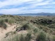 sand dunes uk - Google Search