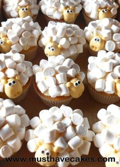 Sheep cupcakes- soooooooo cute!!!! (make with chocolate cake mix instead - much cuter)