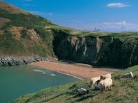 Mwnt Ceredigion, Wales
