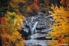 Colorful Autumn creek