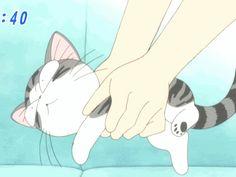 Chi's Sweet Home Animated GIFs | chistrugglegif-1 - Chi's sweet home - Isuzu-land - Photos - Club Ados ...