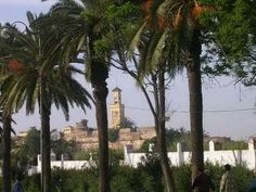 Larache normal_tn_dscn33181.jpg (400×300)