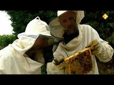Het Klokhuis Bijen