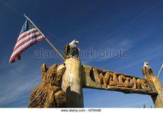 USA, ALASKA, KENAI PENINSULA, SOLDOTNA: Alaskan Chainsaw Woodcarving Critter, (Local Craft); - Stock Image