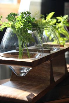 Keeping herbs fresh will no longer be a concern with Roost's Window Sill Herb Holder. Mouth blown vases are held upright in this oiled wooden rack, the ideal place to store your freshly cut herbs.