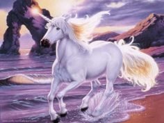 images of unicorns and pegasus | Unicorn-unicorns-5591227-800-600.jpg