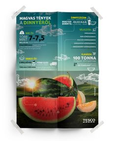 Tesco - Melon infographics Infographics, Cantaloupe, Mint, Fruit, Infographic, Info Graphics, Visual Schedules, Peppermint