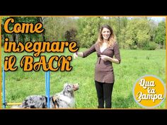 Addestramento/Educazione cani n° 18 - Come insegnare il BACK | Qua la Zampa - YouTube