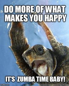 These 31 super happy animals will leave you smiling after you have seen them. We might not be able to understand animals, but we can all recognise a smile as a Happy Animals, Cute Baby Animals, Funny Animals, Smiling Animals, Beautiful Creatures, Animals Beautiful, Zumba Quotes, National Geographic Animals, Happy Turtle