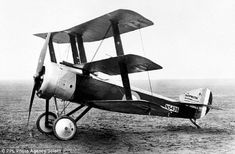 Sopwith Triplane #aviationpilot
