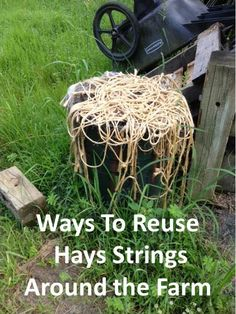Adapted from In a pinch baling twine can be used to: make a makeshift halter make a makeshift leadrope temporarily fix fence boards and gates replace broken blanket straps make a makeshift martinga. Horse Barns, Horses, Horse Stalls, Farm Hacks, Horse Care Tips, Future Farms, Horse Crafts, Dream Barn, Down On The Farm