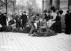 Vendeurs de buis béni devant l'église de la Madeleine. Paris, 1908.
