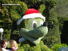 Disney World at Christmas: The Mickey Mouse Christmas Topiary