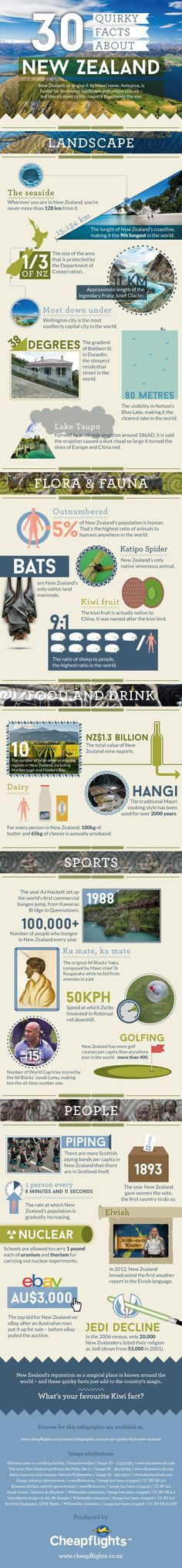 30 Quirky Facts About New Zealand www.travelerhype.com #travel #infographics