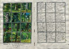 Forest Diary ~ Keeping a nature sketchbook!