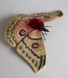 Fabric sculpture Bunaeopsis Arabella Moth by YumiOkita on Etsy Sculpture Textile, Soft Sculpture, Textile Art, Embroidery Fabric, Fabric Art, Fabric Crafts, Insect Art, Textiles, Sewing Art