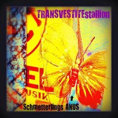 Schmetterling Anus by TRANSVESTITEstallion the glitch / noise / art Band | TRANSVESTITEstallion - the experimental dada Electro ART Noise Glitch Band