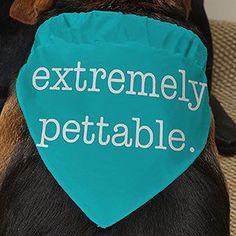 dog obedience training tips Dog Training Methods, Basic Dog Training, Dog Training Techniques, Training Your Puppy, Potty Training, Training Dogs, Maltese, Illustration Simple, Positive Dog Training