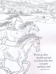 Nature Coloring Book for Adults